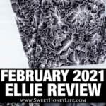 2 images of the february 2021 ellie subscription box with text overlay between them